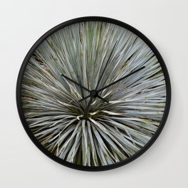 Prickly Wall Clock