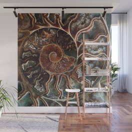 Fossilized Shell Wall Mural