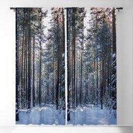 Sun forest Blackout Curtain