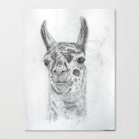 llama Canvas Prints featuring Llama by Condor