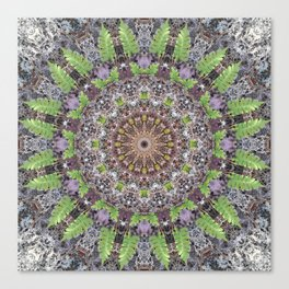 Natural elements in forest mandala Canvas Print