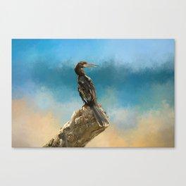 Anhinga Digital Painting Canvas Print