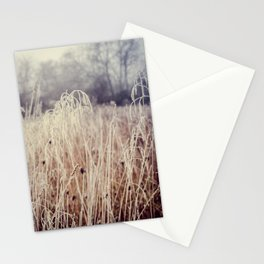 Hoarfrost Study l Stationery Cards