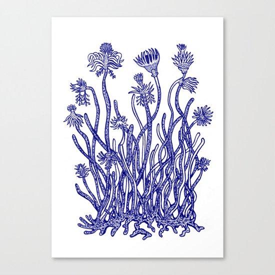 Beautiful nature Canvas Print