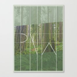 PNW - Rockport State Park Canvas Print
