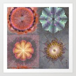 Absenters Intermixture Flower  ID:16165-065456-80170 Art Print