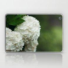 Snowball Bush Laptop & iPad Skin