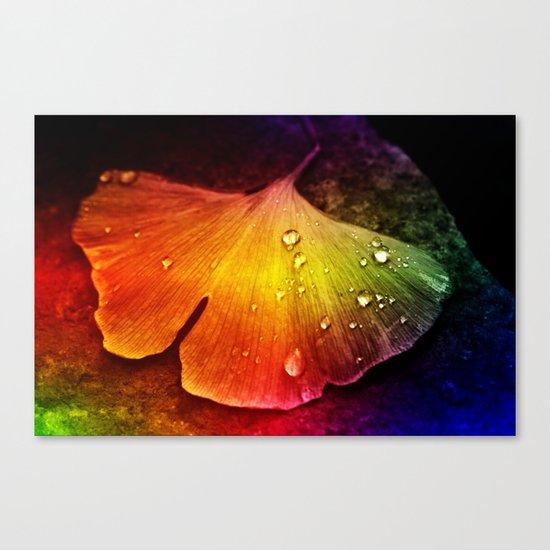 Gingko leaf muticolored Canvas Print