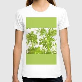 Pelargonium citrosum plant foliage macro T-shirt