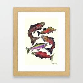 Salmon Fish Chart Framed Art Print