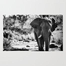 Elephant II Rug