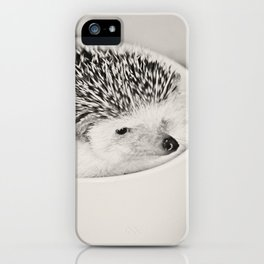 Disgruntled Hedgie iPhone Case