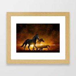 Wild Black Horses Framed Art Print