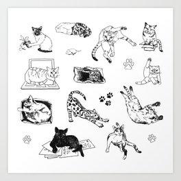 Cat Things Art Print