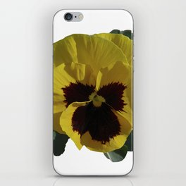 Golden Pansy iPhone Skin