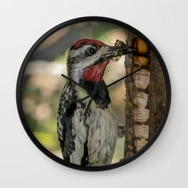 Sapsucker with bugs Wall Clock