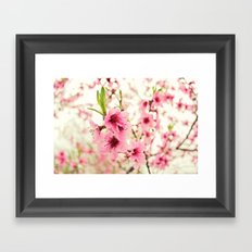 Spring is in the air! Framed Art Print