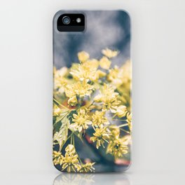 Yellow Linden Flower Branch Blooming Summer iPhone Case
