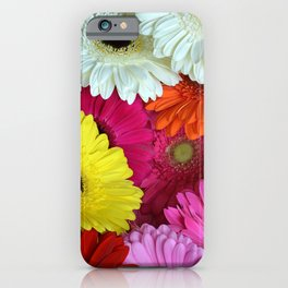 Gerbers in color iPhone Case