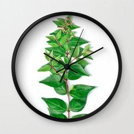 Leafy Branch Wall Clock