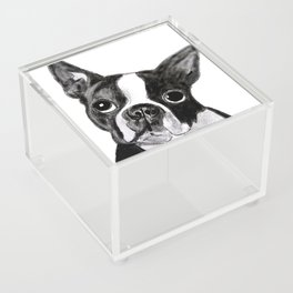 Boston Terrier Acrylic Box