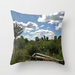Upstate Trail Nonsense Throw Pillow