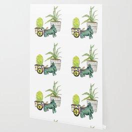 Donkey Cactus Wallpaper