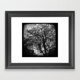Bent Not Broken Framed Art Print