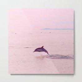 Pink Porpoise Metal Print