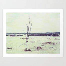 The Mallee Polaroid Art Print
