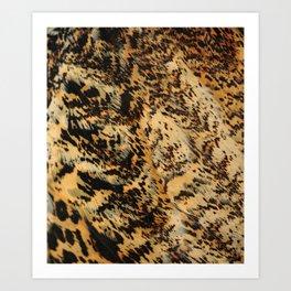 detail feathers Eurasian Bittern Roerdomp  Art Print