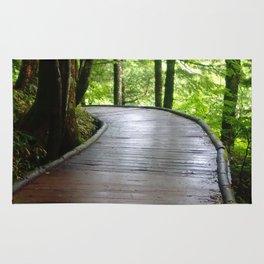 Walkway Rug