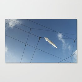 Wire Hangling Canvas Print