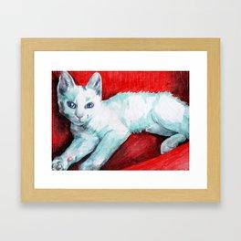 White Kitten on a Red Chair Framed Art Print