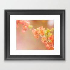 bokeh flowers Framed Art Print