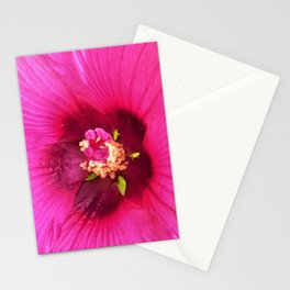 Deep Pink and Crimson Hibiscus Flower Macro Stationery Cards