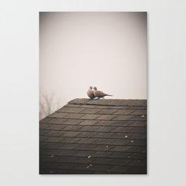 Dove Love Canvas Print