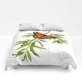 Viceroy and Willow Comforters