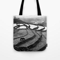 Horses on rice paddies in northern Vietnam Tote Bag