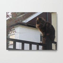 kitty. Metal Print