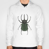 atlas Hoodies featuring Atlas Beetle Insect Digital Watercolor Painting Art Print- minimalist art - gallery wall art - anima by Kelsi Eldredge
