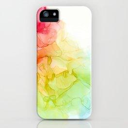 Study in Rainbow iPhone Case