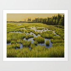 Maine Marsh 2 Art Print