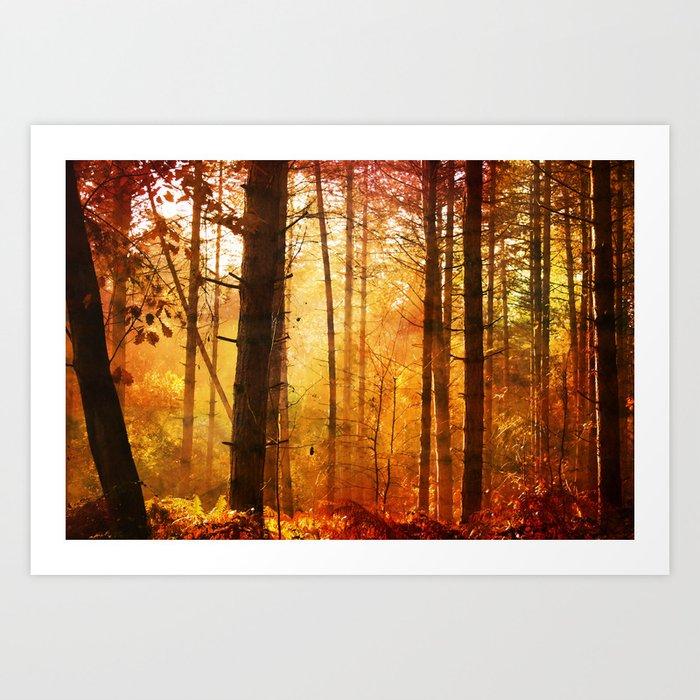 Forest Glow Art Print