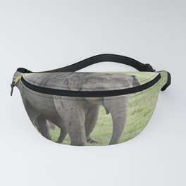 group elephants in the savannah Fanny Pack