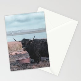 Vintage photography - Highland Cow, Thurso, Scotland Stationery Cards