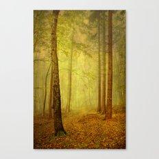 fairytale path Canvas Print