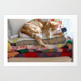 Princess Kitty Art Print