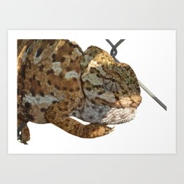 Chameleon Hanging On A Wire Fence Vector Art Print