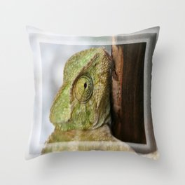 Green Chameleon Holding On To A Shed Door Throw Pillow